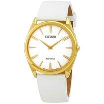 Citizen Stiletto United States of America, New York, Bellmore