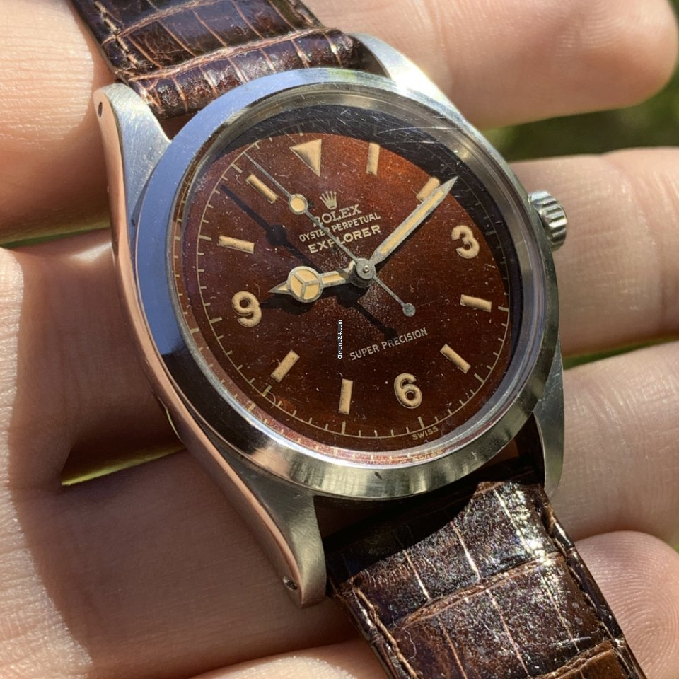 Rolex Explorer 5504 , TROPICAL Gilt Dial , Chocolate Brown