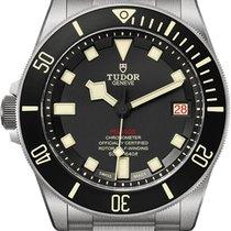 Tudor Pelagos new