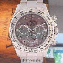 Rolex Daytona 116509 Çok iyi Beyaz altın 40mm Otomatik