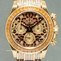 Rolex Gult gull 40mm Automatisk 116598 SACO brukt