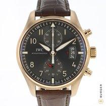 IWC Pilot Spitfire Chronograph Or rose 43mm Gris Arabes