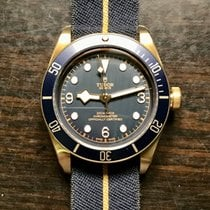 Tudor Black Bay Bronze 79250BB 2019 new