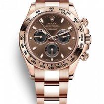 Rolex Red gold Automatic Brown Arabic numerals 40mm new Daytona