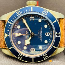 Tudor Bronze 42mm Automatic 79250BB new