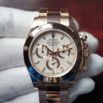 Rolex Daytona Rose gold 40mm White No numerals United States of America, Florida, Orlando