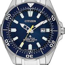 Citizen BN0201-88L Titanium Promaster new