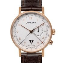 Junkers Eisvogel 6736-4