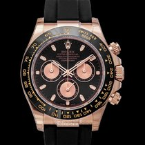 Rolex 116515LN Rose gold Daytona 40mm new United States of America, California, San Mateo