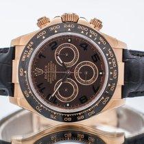 Rolex Daytona Rose gold 40mm Brown Arabic numerals United Kingdom, Essex