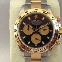 Rolex Daytona steel/gold Paul Newman dial 116503