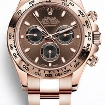 Rolex Rose gold 40mm Automatic 116505 new United Kingdom