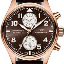 IWC Pозовое золото Автоподзавод Коричневый Aрабские 43mm новые Pilot Chronograph