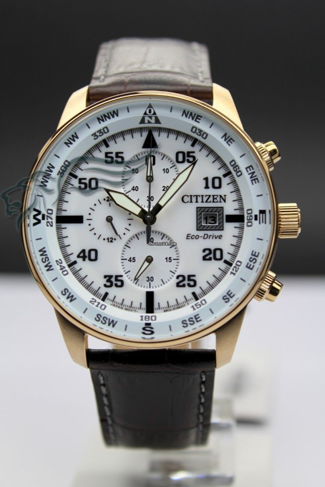 competitive price c54aa 39d05 Citizen CA0693-12A Of Collection Crono Aviator Eco-Drive Solore