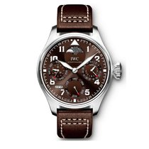 IWC Steel 46mm Automatic IW503801 new