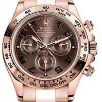 Rolex Daytona Rose Gold Chocolate Dial on Bracelet 116505 New