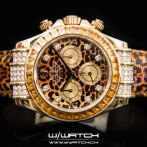 Rolex Daytona Leopard SACO