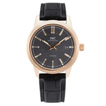 IWC Red gold Automatic Grey 40mm new Ingenieur Automatic