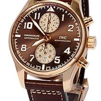 IWC Pilot Chronograph Rose gold 43mm Brown Arabic numerals United States of America, Florida, Plantation