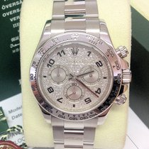 Rolex Daytona 116509 - Diamond Pave - Serviced By Rolex