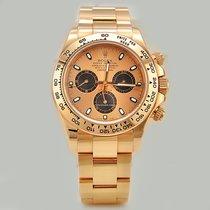 Rolex Daytona / Rose Gold / Paul Newman / 116505 like new
