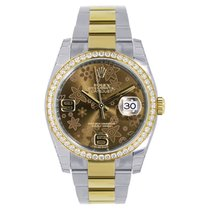 Rolex DATEJUST 36mm Steel  18K Yellow Gold Chocolate Floral...