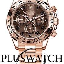 Rolex 116505 Oro rosa Daytona 40mm