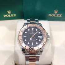 Rolex Gold/Steel 37mm Automatic M268621-0004 new