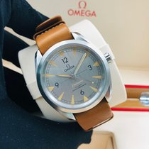 Omega Seamaster Railmaster Steel 40mm Grey