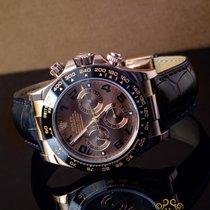 Rolex Daytona 40mm Brązowy
