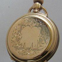 A. W. Waltham & Co Gold Box Hinge Hunter Case