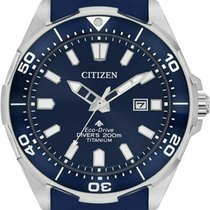 Citizen Promaster United States of America, Massachusetts, Florence