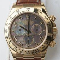 Rolex Daytona Zuto zlato 40mm Sedef-biserast Rimski brojevi