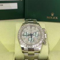 Rolex Daytona Ice