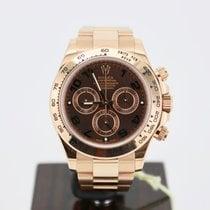 Rolex 116505 Rose gold 2014 Daytona 40mm pre-owned United Kingdom, london