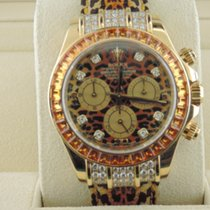 Rolex Daytona Yellow gold 40mm No numerals United States of America, Florida, Fort Lauderdale