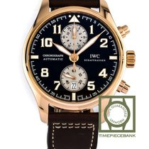 IWC Rose gold Automatic Brown Arabic numerals 43mm new Pilot Chronograph